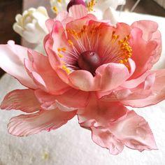 Gum Paste, Rose, Flowers, Plants, Pink, Plant, Roses, Sugar Paste, Royal Icing Flowers