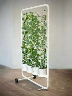 Clever #verticalgarden idea can be used as room divider or screen and it's portable!