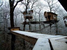 treehouse farytale
