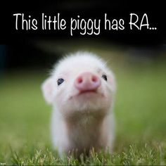 Can't help posting this it is so cute.
