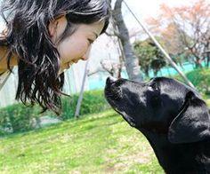 """M Explican por qué el perro es """"el mejor amigo del hombre"""" - 17.04.2015 - lanacion.com"""