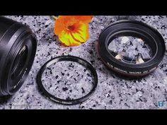 EASY Macro with Nikon Z7 + Nikkor Z 50/1.8 S + Close-Up Lens