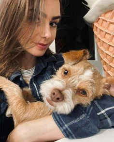 Lily Collins Love Lily, City Of Bones, Iconic Women, Lily Collins, Celebs, Celebrities, Beautiful Actresses, Kendall Jenner, Pretty People
