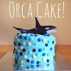 Photography by Michelle: William's Orca Cake