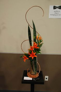 garden club Flower Shows 2013 | Photo Gallery | Naples Garden Club
