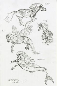 Creature Drawings, Horse Drawings, Animal Drawings, Cool Drawings, Drawing Sketches, Horse Sketch, Mythical Creatures Art, Animal Sketches, Equine Art