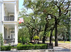 Oak Trees (not many tree lined streets left & they are beautiful! New Orleans Mansion, New Orleans Homes, New Orleans Garden District, New Orleans Architecture, New Orleans Travel, Tree Line, Oak Tree, Next At Home, Historic Homes