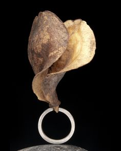 Contemporary Jewelry Design by Andrea Williams: Seed Pod Ring: If I were queen of the forest, this would be my magic ring.