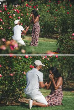 "His last name is ""Rose,"" so he asked her to become a Rose in the middle of a rose garden! This proposal is so sweet and creative. garden wedding His Last Name is ""Rose"" so Naturally He Asked her to Become a Rose in this Beautiful Rose Garden. Proposal Pictures, Engagement Pictures, Proposal Ideas, Surprise Proposal, Engagement Ideas, Wedding Pictures, Wedding Proposals, Marriage Proposals, Engagement Photo Inspiration"