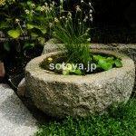 蹲 手水鉢 Japanese Garden Style, Garden Styles, Water Features, Fountain, Yard, Patio, Outdoor Decor, Plants, Water