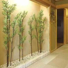 interior decoration with bamboo plants Foyer Design, Hallway Designs, Ceiling Design, Patio Interior, Home Interior Design, Interior And Exterior, Interior Decorating, Home Entrance Decor, House Entrance