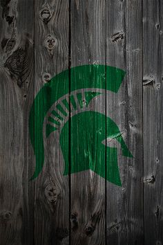 """NCAA Michigan State Spartans Beautiful Gallery Quality High Resolution Canvas 16/"""" x 20/"""""""