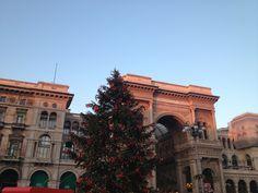 Christmas Tree in Milan (piazza del Duomo)