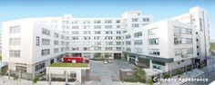 Rayline technology Co., LTD 201, first Building, TaiAn Road Chenghai District, Shantou City, Guangdong Province, China  E-mail: info@raylineltd.com Internet: www.raylineltd.com Tel.: +86-754-8582 6976 Fax: +86-754-8582 6975