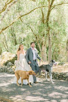 Photography: Matt Edge Wedding Photography - mattedgeweddings.com   Read More on SMP: http://www.stylemepretty.com/california-weddings/2014/12/03/rustic-chic-chalk-hill-winery-wedding/