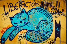 Graffiti in Valparaíso, Chile. http://www.raices.co.uk