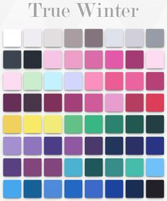 capsule wardrobes using colors for winter coloring Cool Winter Color Palette, Deep Winter Colors, Winter Typ, Clear Winter, Seasonal Color Analysis, Colors For Skin Tone, Cool Undertones, Color Me Beautiful, Season Colors
