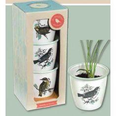 Wild & Wolf Enamel Herb Pot Set