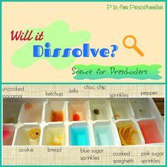 P is for Preschooler: Will it dissolve? Experiment