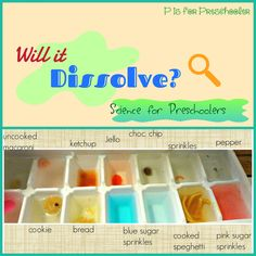 P is for Preschooler: Will it dissolve? Experiment