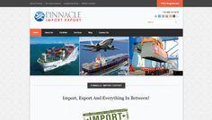 Pinnacle Import Export | Sarvi Solutions @Sarvi Solutions | Best SEO in Mumbai