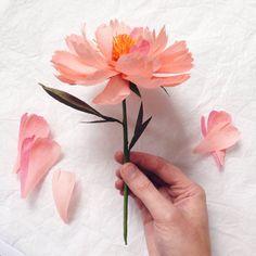Una peonia di fusto singolo di carta fatta a mano, fatta da me nel mio studio a Brighton UK. Ogni petalo è tagliato e modellato a mano, prima di montare il fiore. Questi sono realizzati dalla migliore carta di crepe di qualità importata dallItalia. Ogni fiore è unico e altrettanto bella. Riceverai 1 fiore in rosa salmone, con foglie. Se avete qualsiasi preferenza per colori particolari o più grandi quantità si prega di contattare me e farò del mio meglio per soddisfare le tue esigenze…
