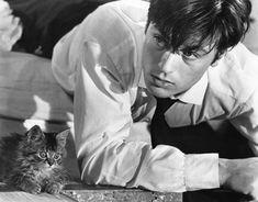 <3. Les Félins (Los Felinos)1964
