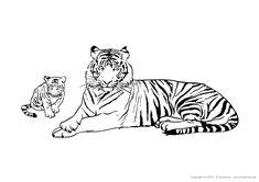 Gezeichnete Tiere zum ausdrucken und ausmalen   Tierbilder