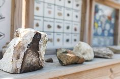 Be ready to get your hands dirty when you pick up a bag of buried treasure and pan for rocks and minerals in our very own mining sluice at the Creation Museum. You'll get to practice your own geology and identify the rocks, minerals, and gems you uncover while the water rushes by.