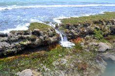 Exposed reef, Satellite Beach, FL