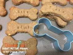 This week we are shining our ThermoFun Member Spotlight on Tania Lee! Tania is a ThermoFun Club Member and shares with us her Peanut Butter, Banana & Oat Doggie Treats! This recipe sounds too delicious and I'm not even a dog! Homemade Dog Cookies, Homemade Dog Food, Dog Treat Recipes, Dog Food Recipes, Peanut Butter Banana Oats, Bellini Recipe, Decadent Food, Dog Wash, Dry Dog Food