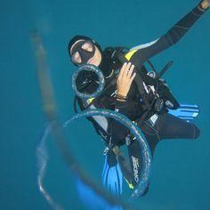 Can you challenge him ?  #giliair #giliislands #gilitrawangan #lombok #bali #indonesia #diving #scubadiving #padiadvanced #padi #instadive #paditv #padicourses #marinelife #bubbles #travel #holidays #discoverscubadiving #sea #sealovers #ocean #oceanlovers #instapic #instaholiday #instadive #instatravel #enjoyinglife #asia #divingasia #divingindonesia #diver