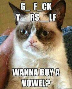 Be nice Grumpy Cat!! Lol                                                       …