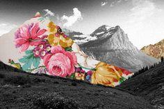 Encantador Blanco y Negro con dibujos coloridos collages - Fubiz Digital