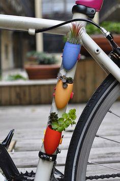 Bike Plants through a 3D Printer