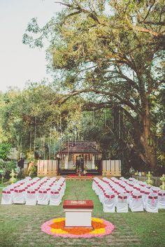 Outdoor wedding ceremony - Image by Chris Spira Photography - A Kerala wedding in India with an ivory and gold bridal sari and bridal party in hues of pink.