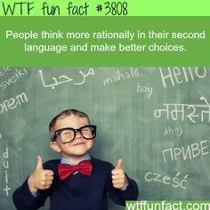 fun fact.