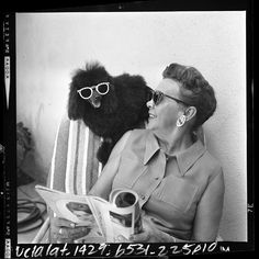 Lema Jean Butcher sitting in lounge chair with her sunglasses wearing poodle, Demi-Tasse, Alhambra, Calif. I Love Dogs, Cute Dogs, Poodle Cuts, Puppy Cut, Tea Cup Poodle, Miss Moss, San Gabriel, Cat Sitting, Baby Dogs