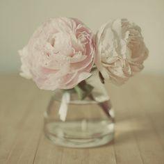 flowers in a small bottle