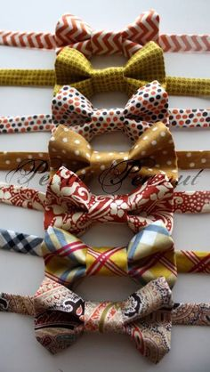 It's all about the Bow Tie