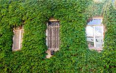 Старый Тбилиси.  .  #тбилиси #თბილისი #Tbilisi #путешествия #фоторепортер