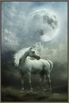 The Dream From Unicorn by greenfeed. Unicorn And Fairies, Unicorn Fantasy, Unicorns And Mermaids, Magical Unicorn, Unicorn Wings, Unicorn Horse, Unicorn Art, Magical Creatures, Fantasy Creatures