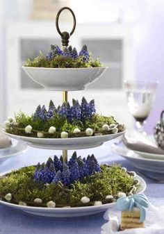 Frühlingsdeko mit Etagere, Moos und Blumen Spring decoration with cake stand, moss and flowers Spring Decoration, Decoration Table, Winter Decorations, Deco Floral, Arte Floral, Floral Foam, Tiered Stand, Easter Table, Family Holiday