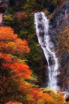 UNESCO  World Heritage Site.  Jiuzhaigou Valley, CHINA