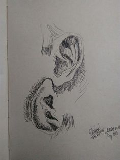 Unable to hear. Everyday Drawing Challenge in less than 30min. Day 80.
