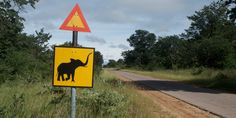 Straßenschild Travel, Zimbabwe, Country, Ruins, Waterfall, Viajes, Destinations, Traveling, Trips