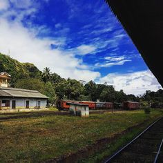 Nawalapitiy Railway Station Sri Lanka. What a colourful eye cooling image.  #luxurioussrilanka #SriLanka #travel #traveler #travelling #traveldiaries #tourist #tour #mustwatch #amustsee #switchoffbrain #relaxing #amazingsrilanka #amazingSL #srilankatravel #visitsrilanka #adventure #adventuretravel #instatravel #travelgrams #travelphotos #travelphotography #travelpic #traveladdict #travelasia #worldtravel #railwaystation #eyecooling #colours