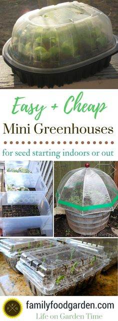 Ideas for cheap mini greenhouse for DIY garden ideas and seed starting #minigardens