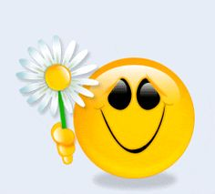 free happy face animations | Happy Smiley Face Animated Gif Photos