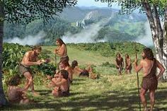 Image result for what did neanderthals look like